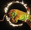 Цирки в Агаповке